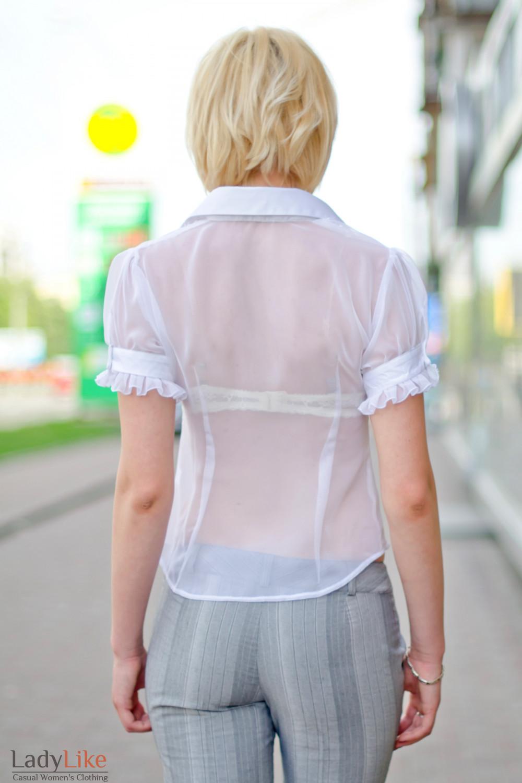 Блузка белая изысканная, вид сзади Деловая женская одежда