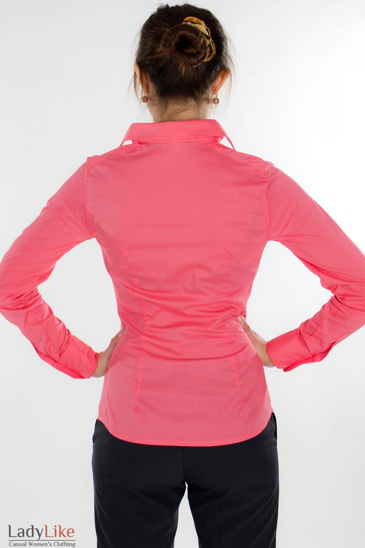 Блузка классическая коралловая вид сзади  Деловая женская одежда