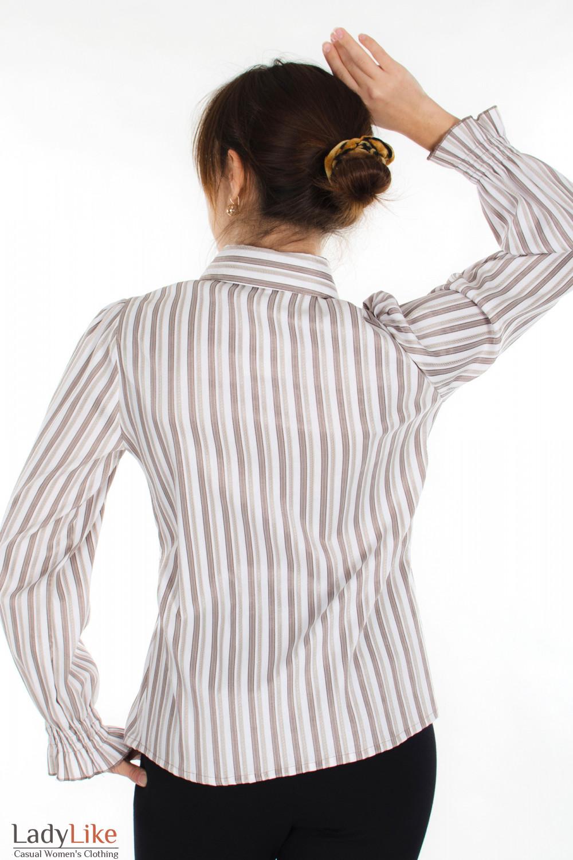 Блузка в бежевую полоску вид сзади Деловая женская одежда