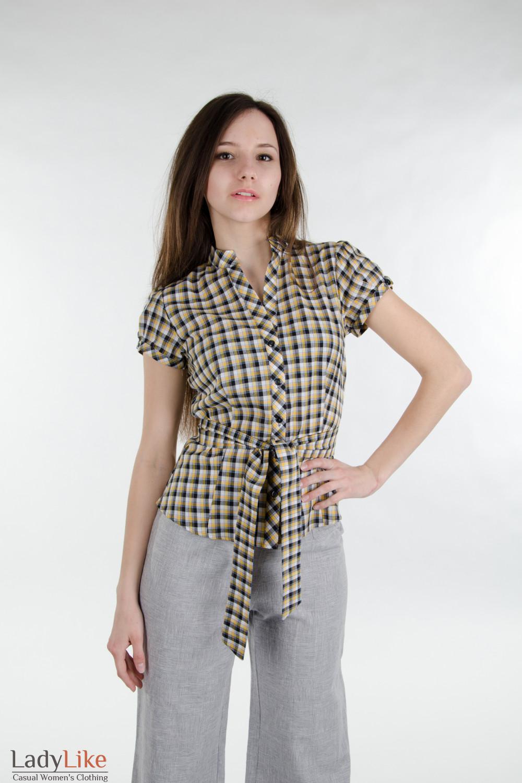 схема вязаной одежды для таксы.