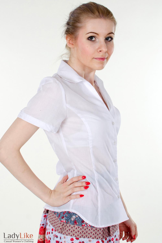 Классическая Блузка Купить