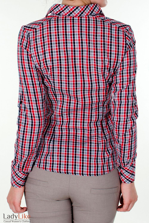 Фото Блузка трансформер в красную клетку вид сзади Деловая женская одежда