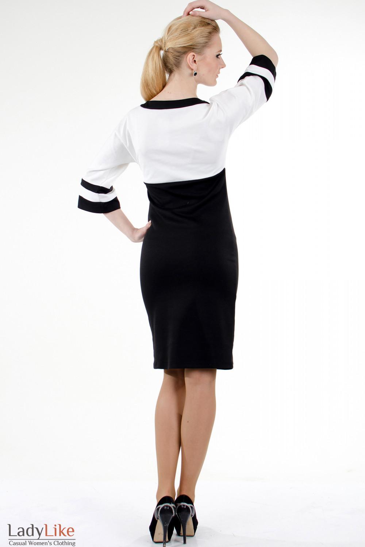 Фото Платье черно-белое трикотажное вид сзади Деловая женская одежда