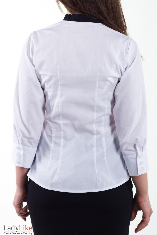 Фото Блузка с галстуком Деловая женская одежда