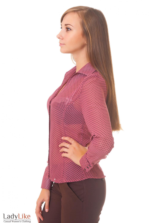 Купить розовую блузку в горошек Деловая женская одежда