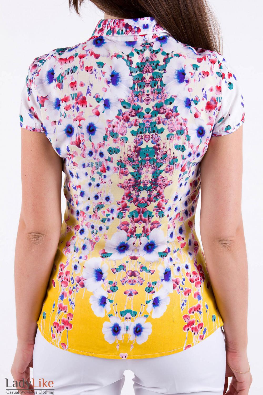 Фото Хлопковая блузка Деловая женская одежда