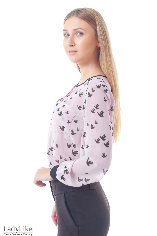 Блузка розовая в птички без воротника Деловая женская одежда