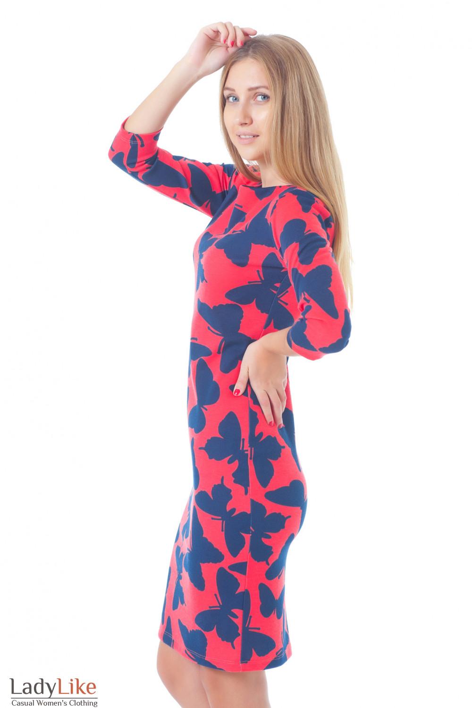 Купить красное платье в синие бабочки Деловая женская одежда