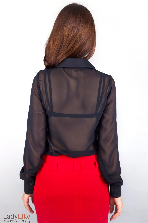 Фото Блузка черная Деловая женская одежда