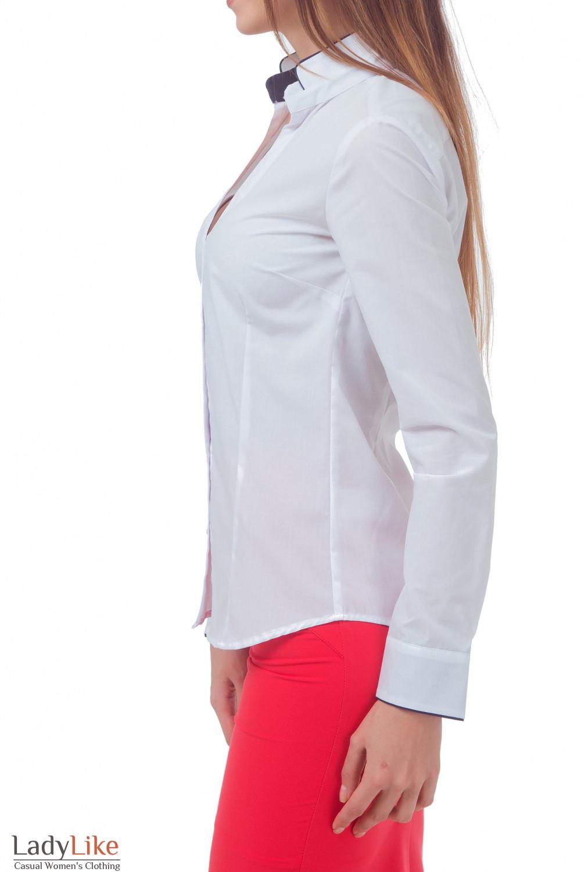 Купить белую блузку с синим кантом на воротнике Деловая женская одежда