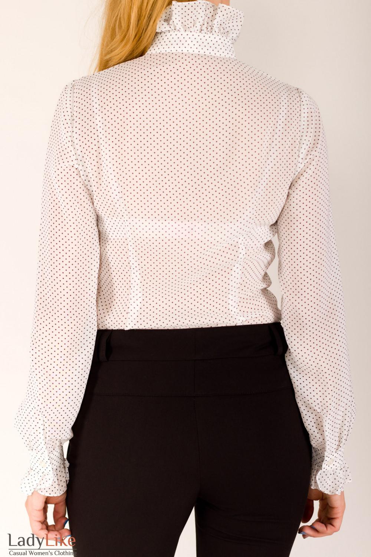 Фото Блузка в горох Деловая женская одежда