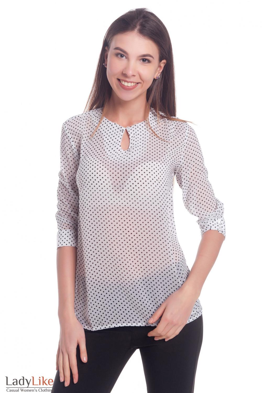 Блузка в горох с капелькой Деловая женская одежда
