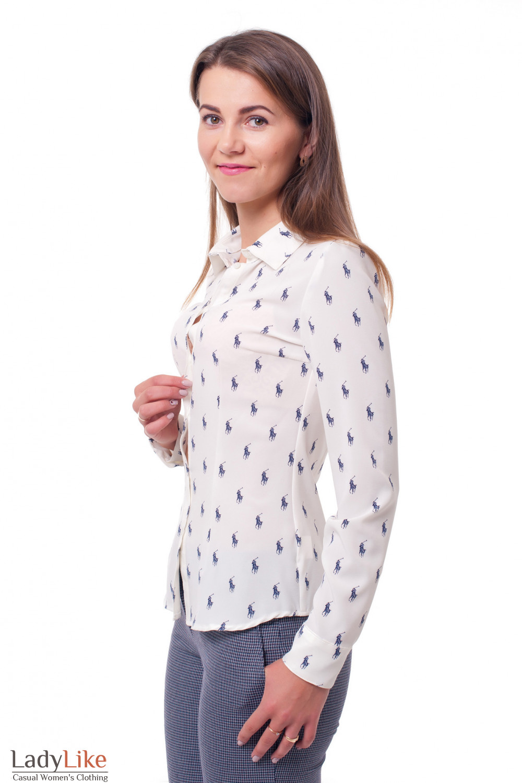 Купить блузку в поло Деловая женская одежда фото