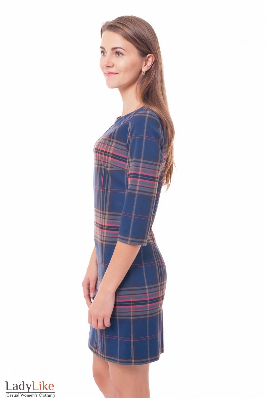 Купить платье в синюю клетку Деловая женская одежда фото