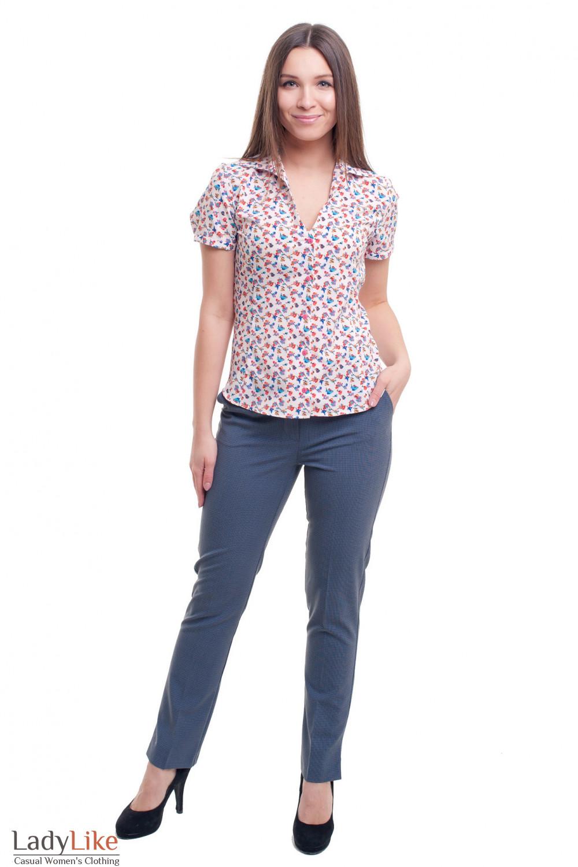 Купить деловые брюки в клетку Брюки женские в синюю лапку с блузкой