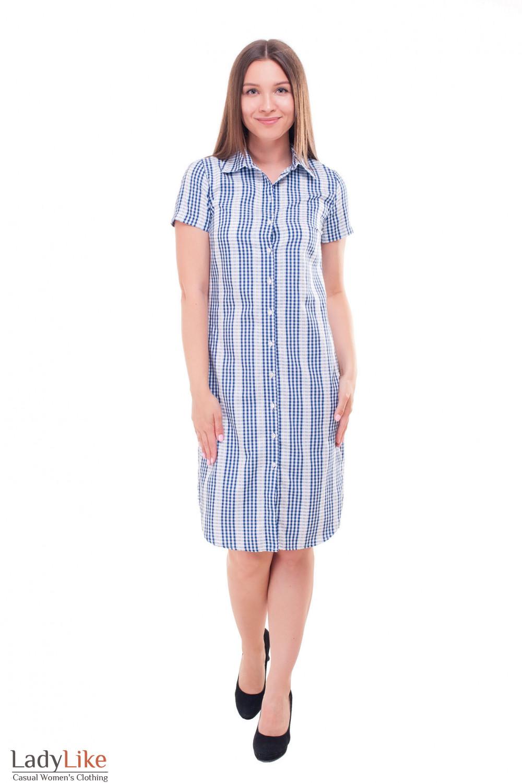 Купить летнее платье-рубашку в синюю клетку Деловая женская одежда фото