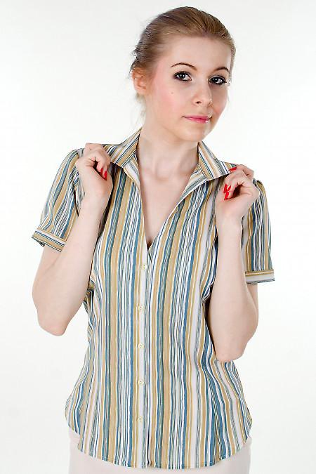 Блузка в голубую полоску с коротким рукавом Деловая женская одежда