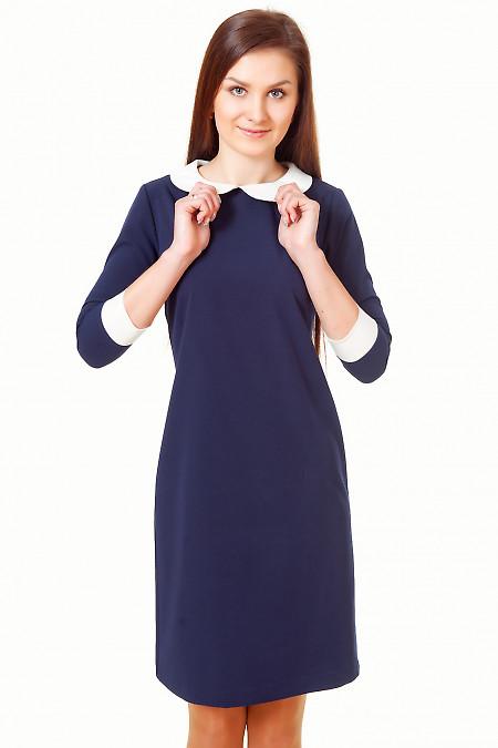 Платье синее с белым воротничком Деловая женская одежда
