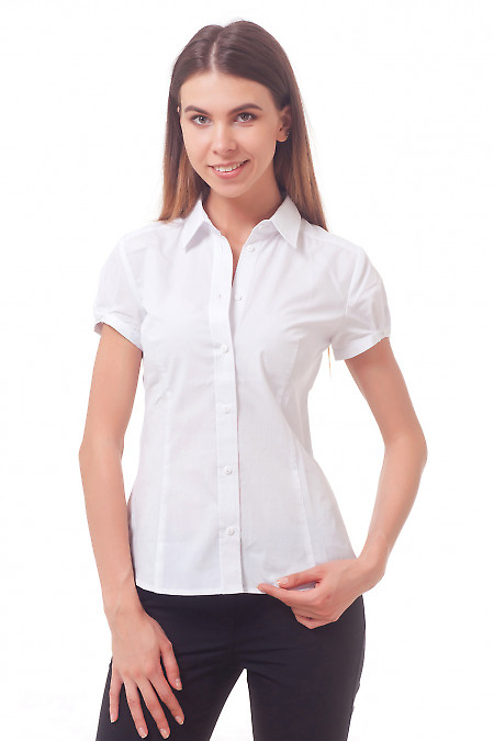 Фото Блузка-рубашка белая с коротким рукавом Деловая женская одежда
