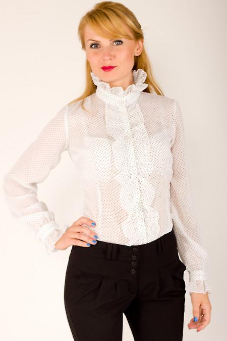Фото Блузка белая в мелкий горошек Деловая женская одежда