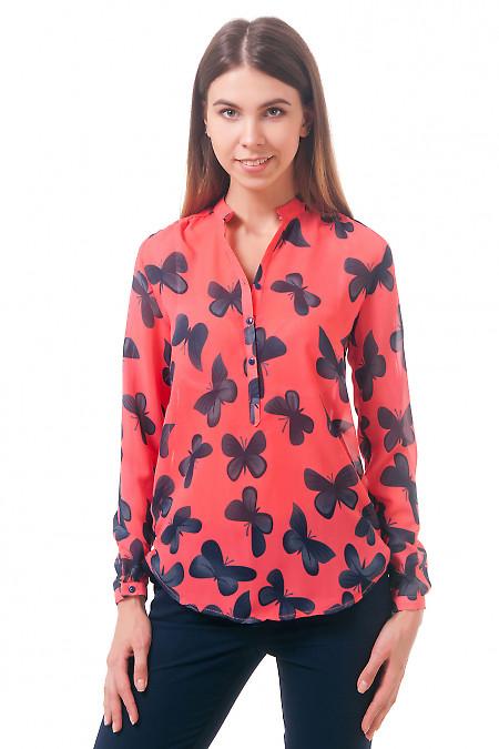 Фото Блузка красная в бабочки Деловая женская одежда