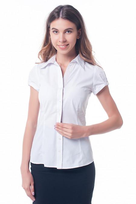 Белая блузка с планкой в точечку Деловая женская одежда фото