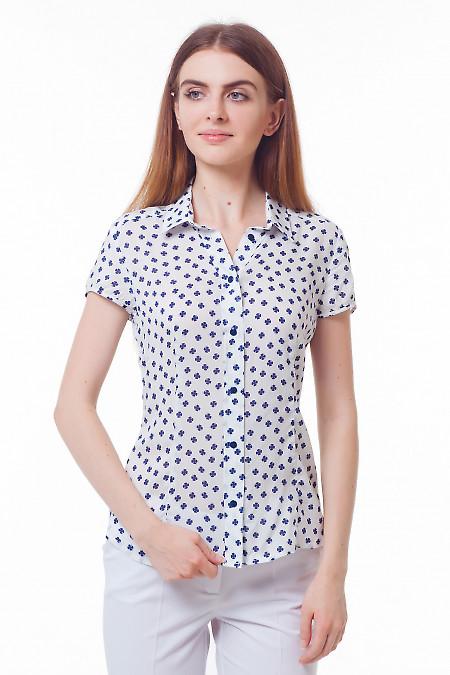 Блузка белая в синий клевер. Деловая женская одежда