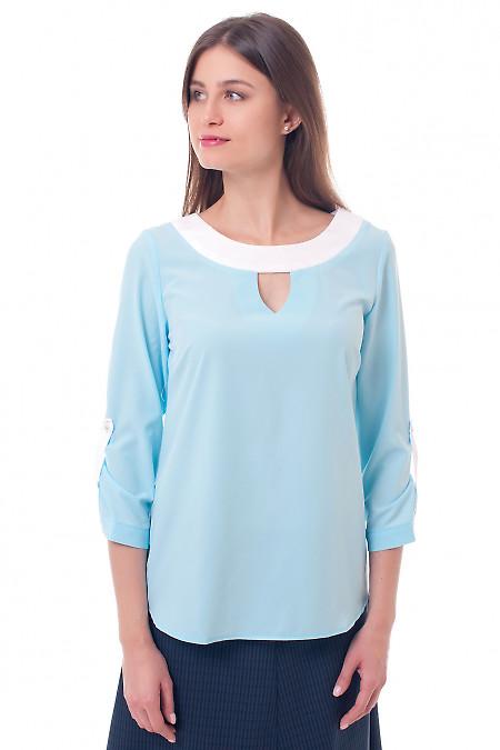 Блузка голубая с белой горловиной Деловая женская одежда фото