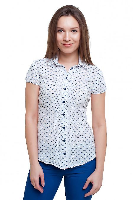 Блузка белая в синий цветочек Деловая женская одежда фото