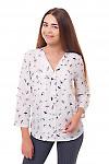 Блузка в птицы Деловая женская одежда фото