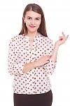 Блузка розовая в коричневые ромбики Деловая женская одежда фото
