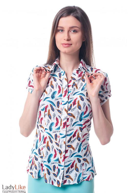 Блузка летняя в перышки Деловая женская одежда фото
