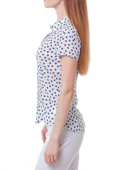 Купить блузку белую в синий клевер Деловая женская одежда