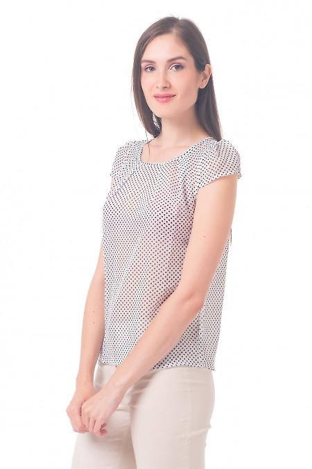 Купить блузку белую в горошек с рукавчиком Деловая женская одежда