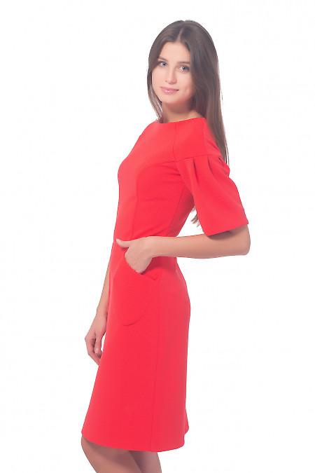 Купить коралловое трикотажное платье Деловая женская одежда