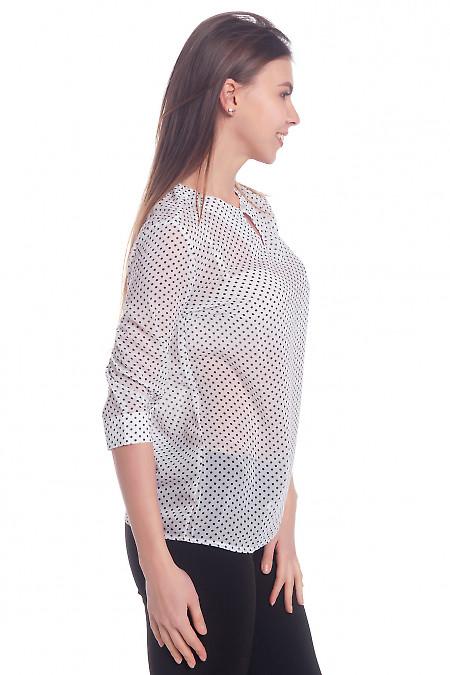 Купить блузку в горох с капелькой Деловая женская одежда