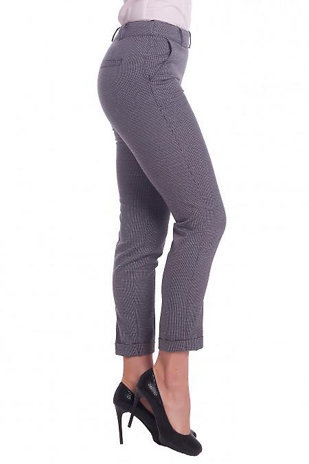 Купить брюки теплые в сине-бордовую полоску Деловая женская одежда