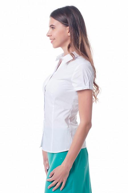 Купить белую женскую рубашку Деловая женская одежда фото