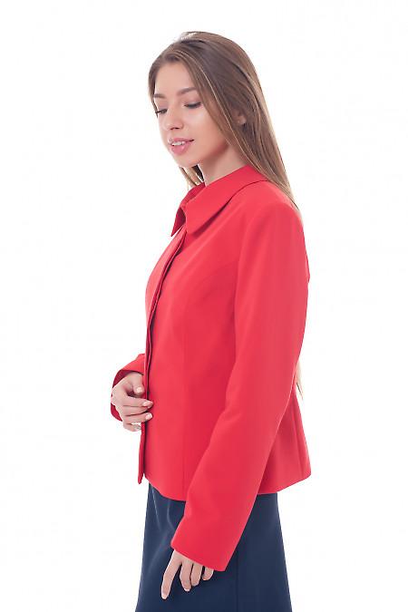 Купить жакет красный с закрытой планкой Деловая женская одежда фото