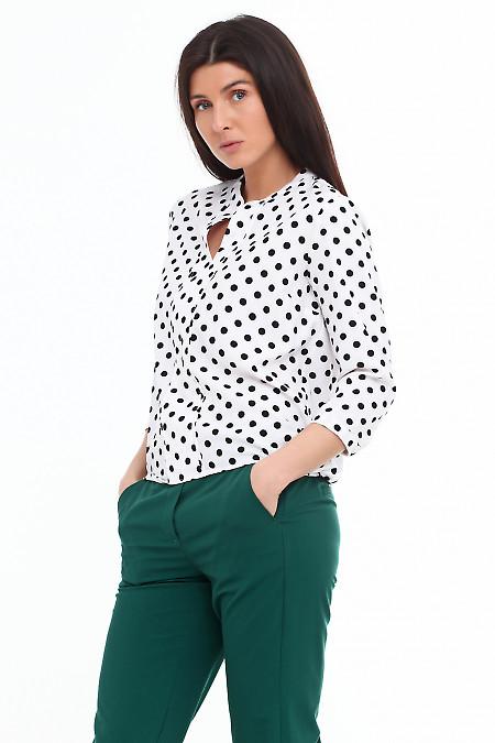 Купить блузку белую в крупный черный горох. Деловая женская одежда фото