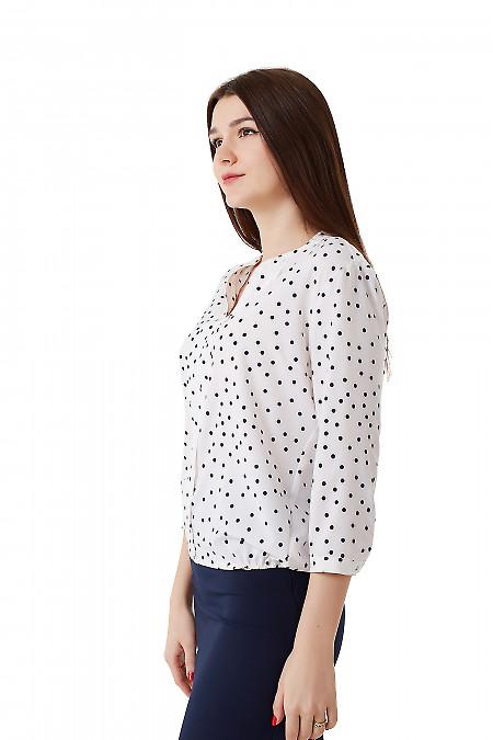 Купить блузку белую в синий горох с резинками сбоку Деловая женская одежда фото