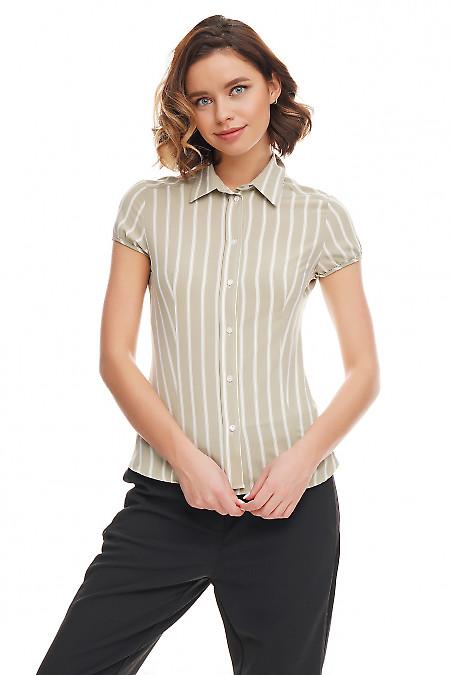 Блузка зелёная в белую полоску Деловая женская одежда фото