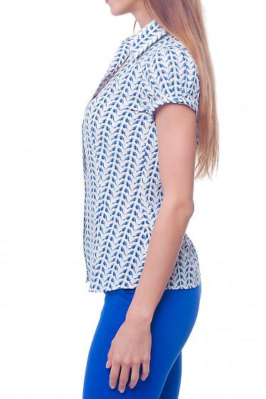 Купить блузку летнюю в синие птички Деловая женская одежда
