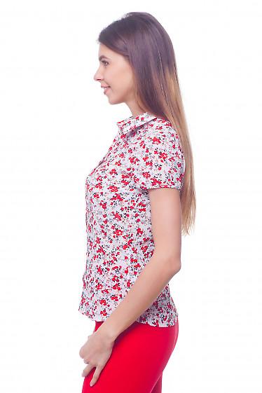 Купить белую блузку в красные маки Деловая женская одежда