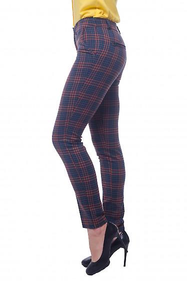 Купить брюки в сине-красную полоску Деловая женская одежда