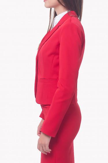 Купить красный классический женский жакет Деловая женская одежда