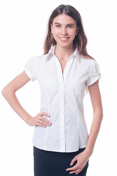 Белая женская блузка с отложным воротником Деловая женская одежда фото