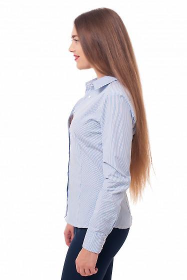 Деловая женская одежда Блузка из хлопка фото