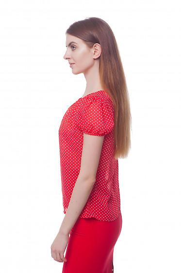 Купить красную блузку в белый горошек с рукавчиком Деловая женская одежда фото