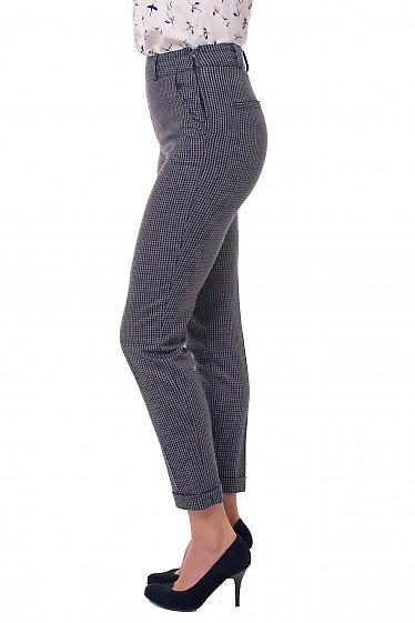 Купить брюки в клетку Деловая женская одежда фото